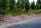 Curved Retaining Wall as Planter Boxes Autumn1